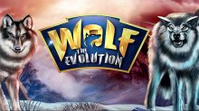 Wolf: The Evolution