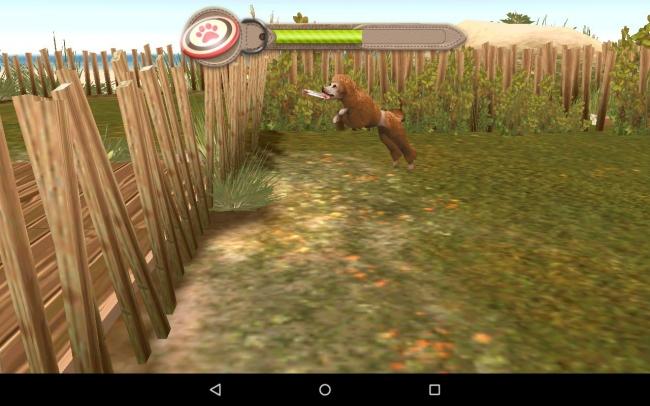 игры собак гонки